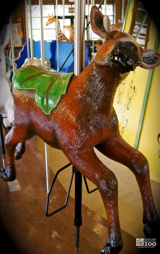 Moose Calf - Carousel
