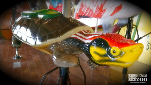 Red-crowned Roof Turtle - Carousel