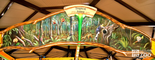 Rounding Board Mural Tropical Forest Asia - Borneo