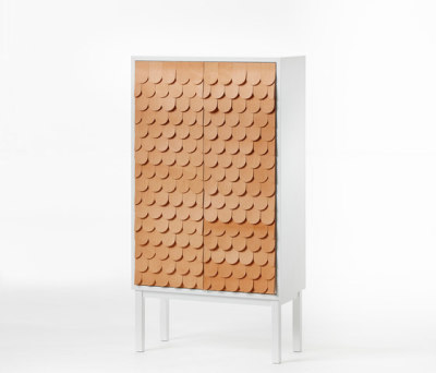 Collect Cabinet 2012 by A2 designers AB