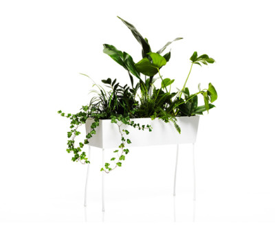 Green Pedestals by OFFECCT