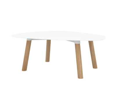 Turtle Table 37 by Universo Positivo