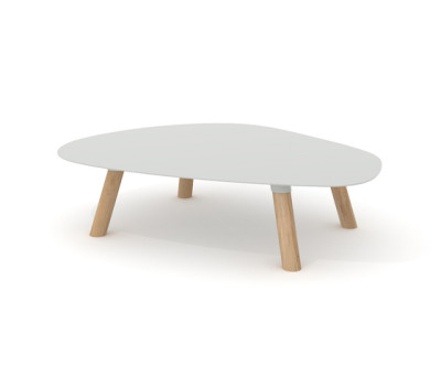 Turtle Table Large by Universo Positivo