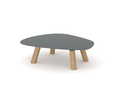 Turtle Table Medium by Universo Positivo