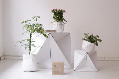 Paperpot  Paperpot