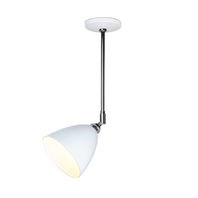 Task Ceiling Light White