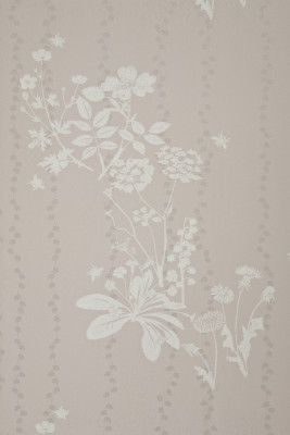 Wild Meadow Wallpaper Plaster