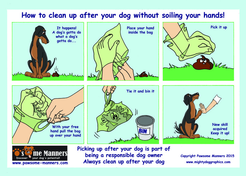 Dobs-Comic How to cleanup after your dog withoutsoiling your hands
