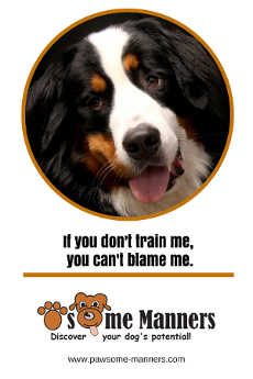 If you don't train me. You can't blame me!
