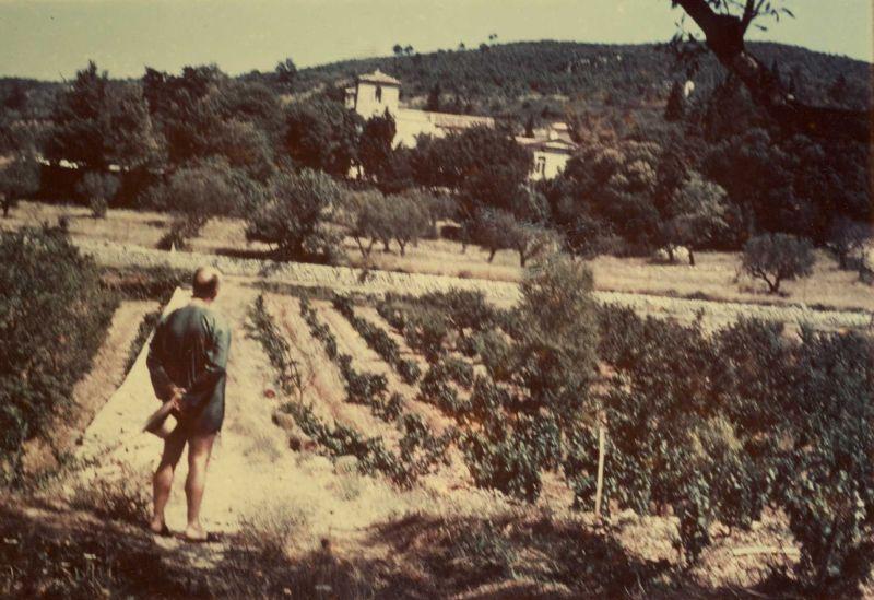 Christian Dior in den Weingärten des Château de la Colle Noire, circa 1955