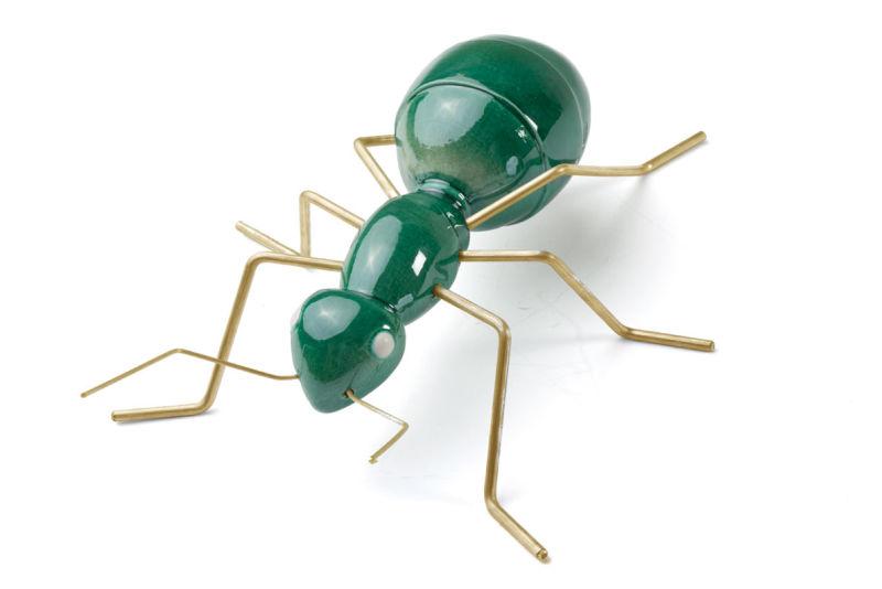 Fauna---ant2