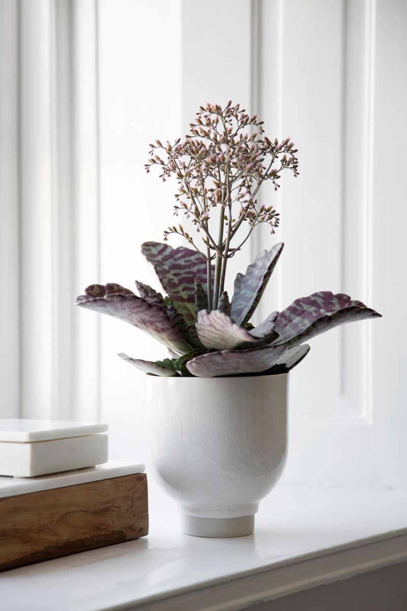 Unico-Flower-Pot-H135-White-1A