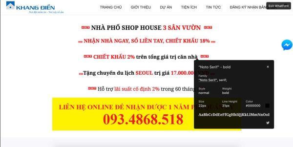 lỗi dùng typo trong web bất động sản 01