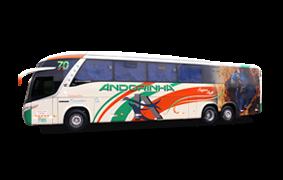 Executivo G7 Pantanal Bus