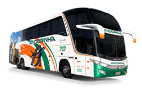 Executivo LD Pantanal Bus