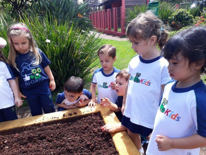 Nível II BV plantou cenoura na Fazendinha
