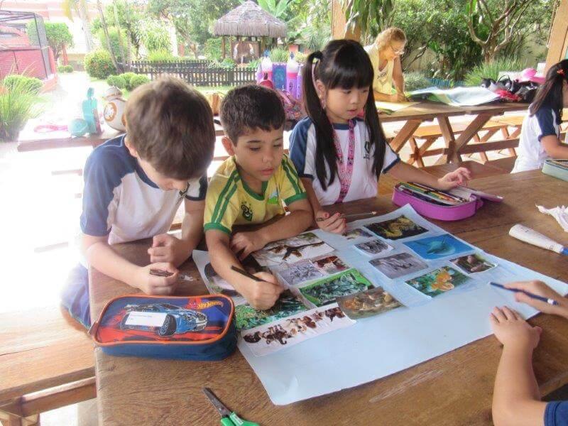 2º anos produziram cartazes: animais aquáticos e terrestres