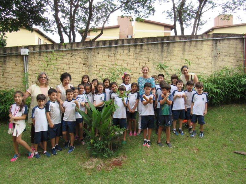 Árvore plantada pelos alunos já está dando frutos