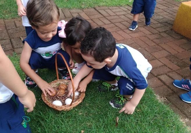 Nível I BV procurou pelos ovos da galinha na Fazendinha