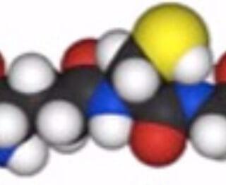 Ortomolecular: Glutation uma substância essencial para nossa defesa celular