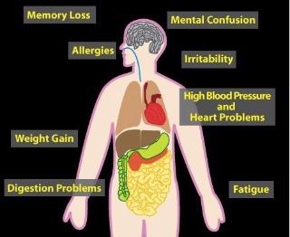 O efeito da Intoxicação por Metais Pesados à saúde