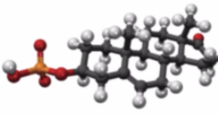 O que é o hormônio DHEA?
