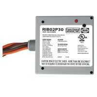 RIB02P30 - Encl. Relay 30 AMP DPS-N/O w/208-277 VAC Coil