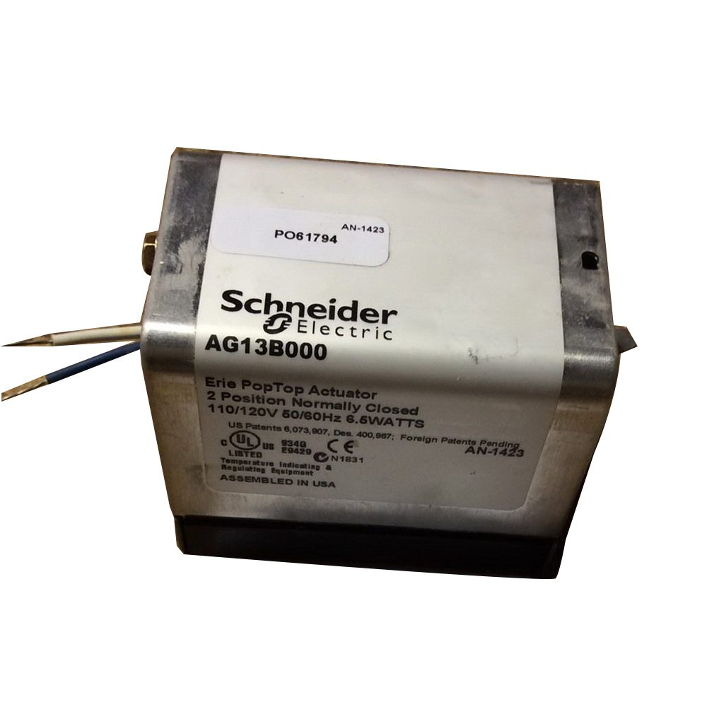 AG13B000 Schneider Electric Detail