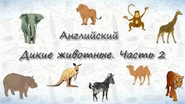 Дикие животные. Часть 2