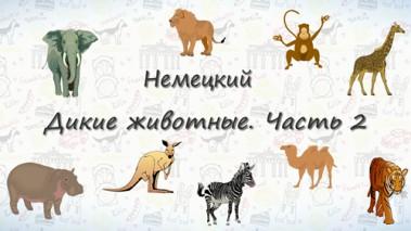 Дикие животные на немецком. Часть 2