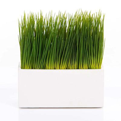 Best of home Kunstpflanze Gras im Pflanztopf 23 cm x 20 cm x 9 cm