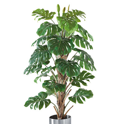 Kunstpflanze Philo-Baum, Naturstamm, Naturstamm ca. H180 cm