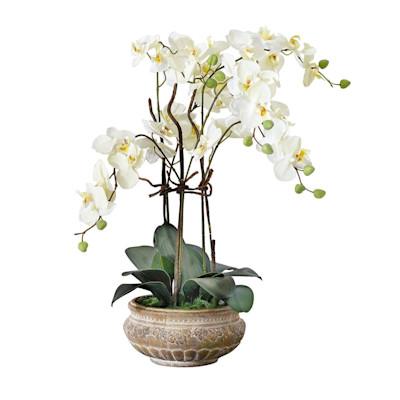 Kunstpflanze Orchideentopf, mit Übertopf, Kunststoff/ Keramik ca. H58 cm