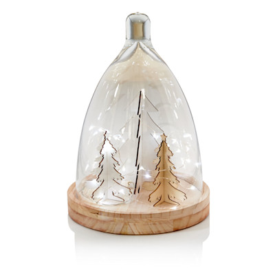 IMPRESSIONEN living Cloche mit LED-Lichterkette, abnehmbare Glashaube, beleuchtet, Country-Style, Holz, Glas