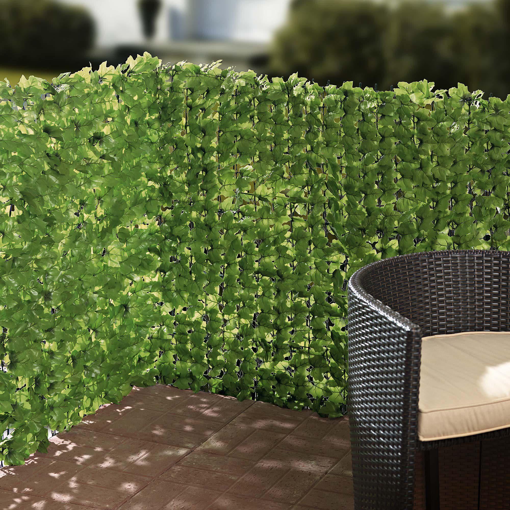 Pflanzen Als Sichtschutz Fr Balkon Amazing Bambus Auf Dem Balkon