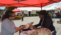 Ifill explains the benefits of green bananas to a member of the public at this year's World Food Day activities
