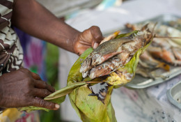 A woman holds cooked, locally caught reef fish, Santupaele village, Western Province, Solomon Islands. <a href=&quot;https://creativecommons.org/licenses/by-nc-nd/2.0/&quot; target=&quot;_blank&quot;>CC BY</a> <a href=&quot;https://www.flickr.com/photos/theworldfishcenter/&quot; target=&quot;_blank&quot;>World Fish</a> / Filip Milovac