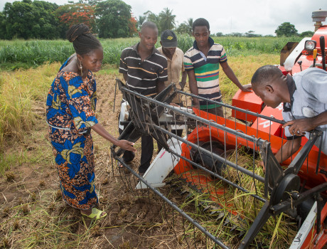 Agribusinesses will be key to creating a more profitable and sustainable agri-food sector for youths with the right skills. © GIZ Klous Wohlmann