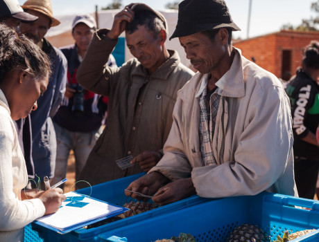A tool, which compares the impacts of different certifications and helps producers meet required standards and demonstrate the sustainability of their production, has been used recently by GIZ in Madagascar © GIZ-Madagascar