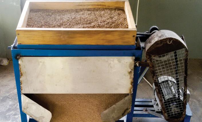 Processing cassava peels into livestock feed. © Iheanacho Okike ILRI