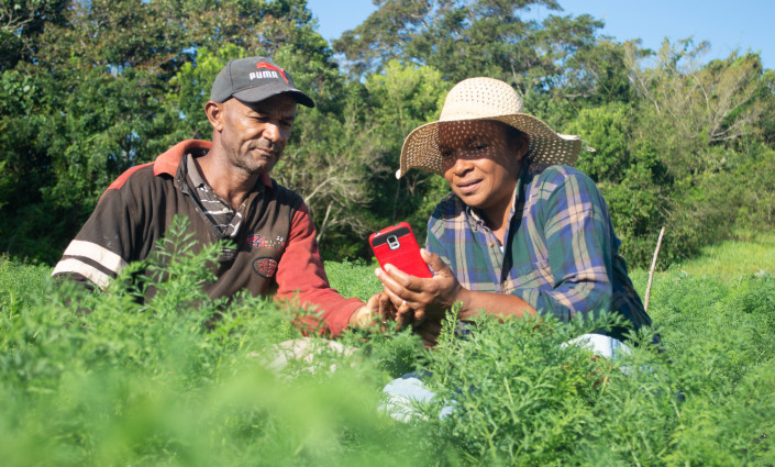 Revofarm is leading the way in providing weather and agronomic data to farmers on their phones © Raneil Robinson