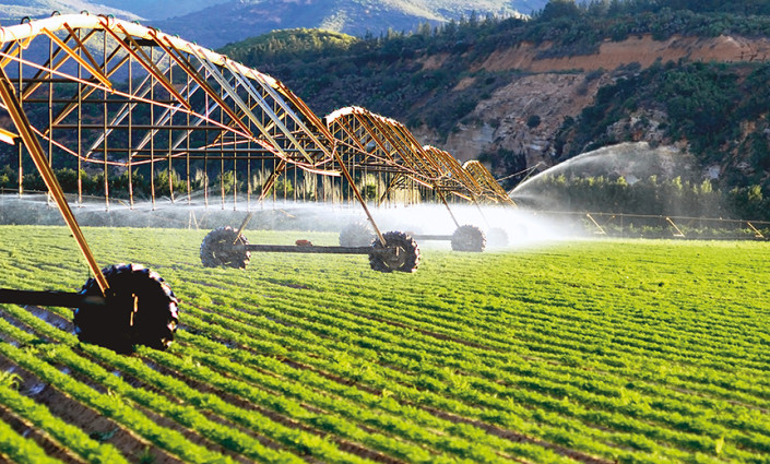 Crop productivity on irrigated land is 2.7-fold higher than that of rainfed agriculture, which  is nevertheless practiced on 80% of global cropland © shutterstock