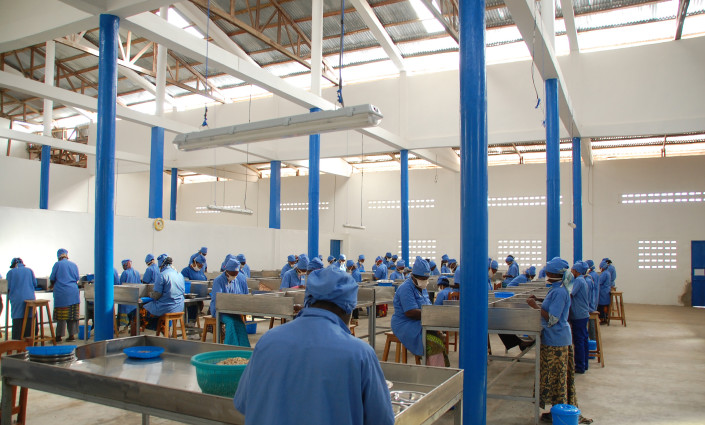 Tolaro Global's processing facility buys cashews from 7,000 farmers © Tolaro Global
