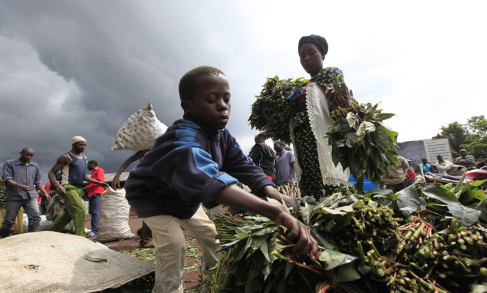 Cassava leaves at a market in the Democratic Republic of Congo. © Reuters/James Akena
