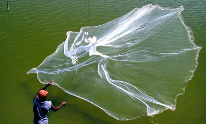 Awa Fish sources fish from more than 400 fishing families © Robert Burch/Alamy Stock Photo
