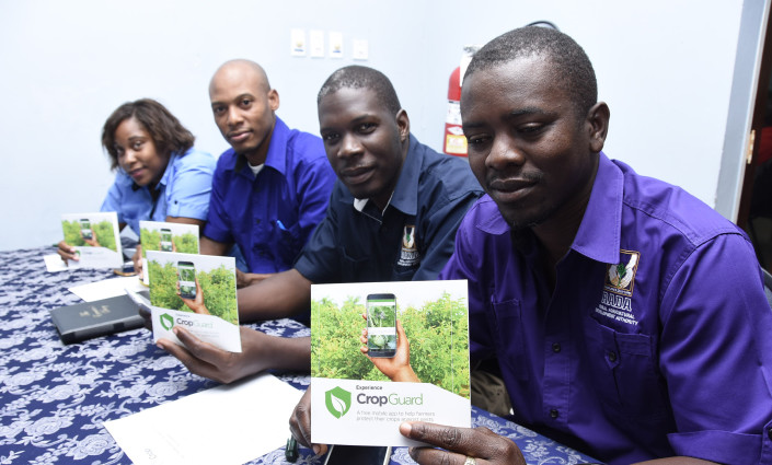 CropGuard provides farmers with real-time information about pests and diseases and access to specialists © CropGuard