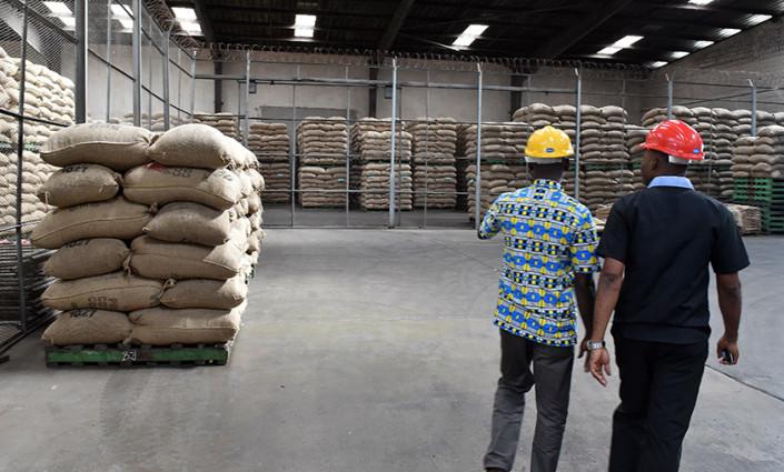 Pour être techniquement viable, l'entreposage se fonde sur les volumes et les organisations agricoles doivent par conséquent renforcer la capacité de regroupement et de commercialisation collective ©ISSOUF SANOGO/AFP/Getty Images