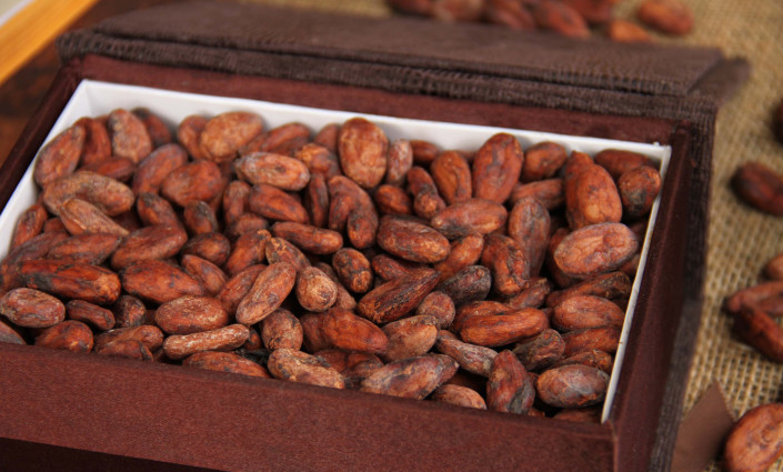 MCFCSL has seen demand from international buyers increase by 100% since gaining GI certification © Montserrat Cocoa Farmers' Co-operative Society Limited