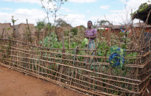 By practicing permaculture, Susan Manuel has access to a sustainable source of fresh vegetables © Charles Mkoka