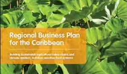 Nutrition business plan